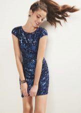 Blue shiny dress case