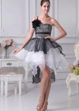 organza tutu mekko