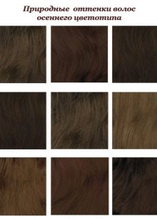 Shades of hair Autumn color type