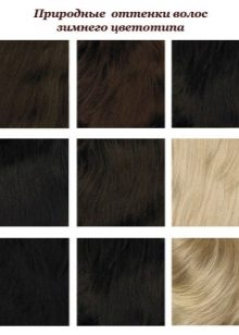 Shades of hair inherent in the color type Winter