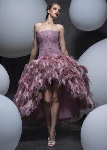Plunksnos suknelė