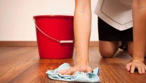 Hoe Zelenka van verschillende oppervlakken te wassen?