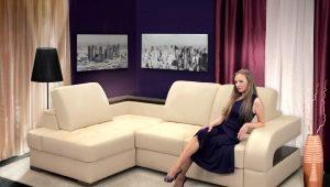 Hoe schoon te maken zonder echtscheiding lichte sofa thuis?