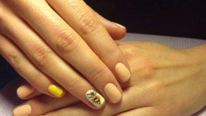 Ideeën heldere manicure met een bij