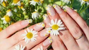 Hoe bloemen te tekenen op nagels: stap voor stap demonteren