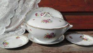 Kahla Porcelain: types, tips voor het kiezen en verzorgen van gerechten