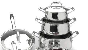 Amet-gerechten: een beoordeling van het modellengamma