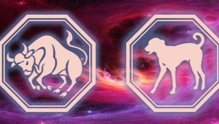 Taurus dating Horoskop