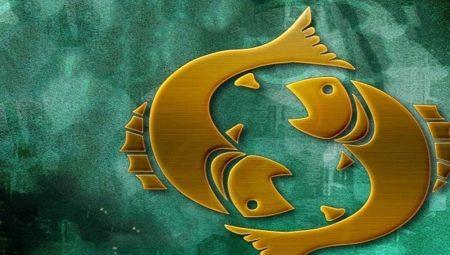 obilje iskustva s prijateljima s ribama