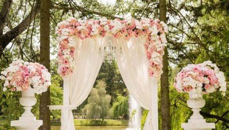 prijedlog braka bez izlaska amoory chat chat