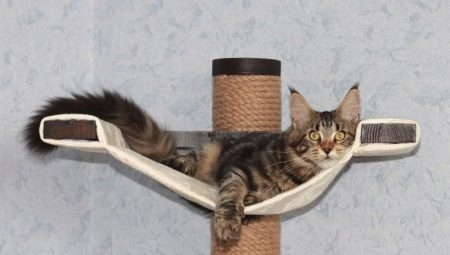 Home and other equipment for Maine Coon
