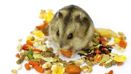 Makanan Untuk Hamster 19 Foto Apakah Komposisi Terbaik Untuk