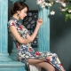 Chinese dress qipao (Cheongsam dress)