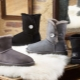 Uggs turkista