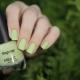 Kenmerken en kleurenpalet van nagellak Kapous