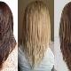 Fox tail haircut: caracteristici, argumente pro și contra, recomandări pentru selecție