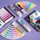 Everything you need to know about Pantone