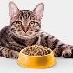 Grainless cat food