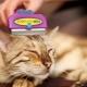 Furminators for cats: description, types, selection and application