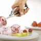 Lepel voor ijs: kenmerken en gebruiksvoorschriften