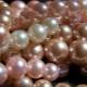 Pearle de culoare roz: descriere și proprietăți