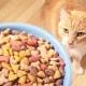 Comparison of cat food: classes, compositions, brands