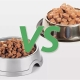 Wet and dry food: how best to feed a cat?