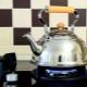 กาน้ำชาสำหรับเตาแก๊ส: ประเภทและรายละเอียดปลีกย่อยที่เลือก